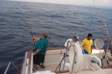 More pulling on a blue marlin…note the interest and concern of the Captain and Crew……..boring. Jan 2004