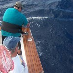 Bob V. with some rather serious straight up and down pulling on a blue marlin aboard the Christina Lynn. This fish story had an uhappy ending when the hook pulled after a 2 hour battle with the fish straight up and down and just 50 feet away.  A great thrill nonetheless!