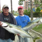 Private boater Mike Kraus of the Blackjack (right) with yellowtail caught while fishing out of Marina Coral