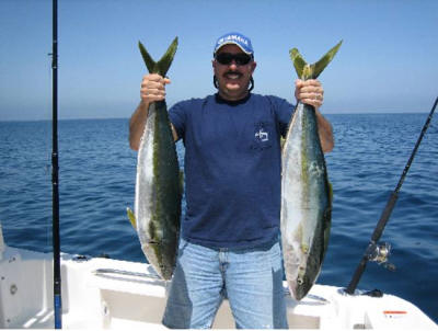 Two Nice Coronado Islands Yellowtail. Photo sent in by private boater Jesus Denogean on June 15, 2007